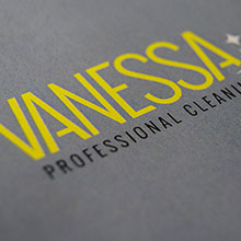 Vanessa Professional Cleaning